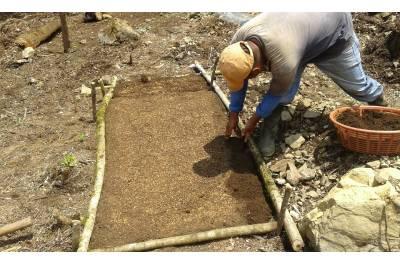 Restauración ecológica para la conectividad en las cuencas Selegua e Ixcán, Huehuetenango, financiado por el Fondo a la Conservación de Bosques Tropicales en Guatemala (FCA).