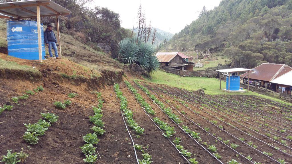 Clima, Naturaleza y Comunidades en Guatemala –CNCG-, con el apoyo de Agencia Internacional de Desarrollo del pueblo de los Estados Unidos (USAID). Programa liderado por Rainforest Alliance e implementado por un consorcio de instituciones ambientales, académicas y empresariales