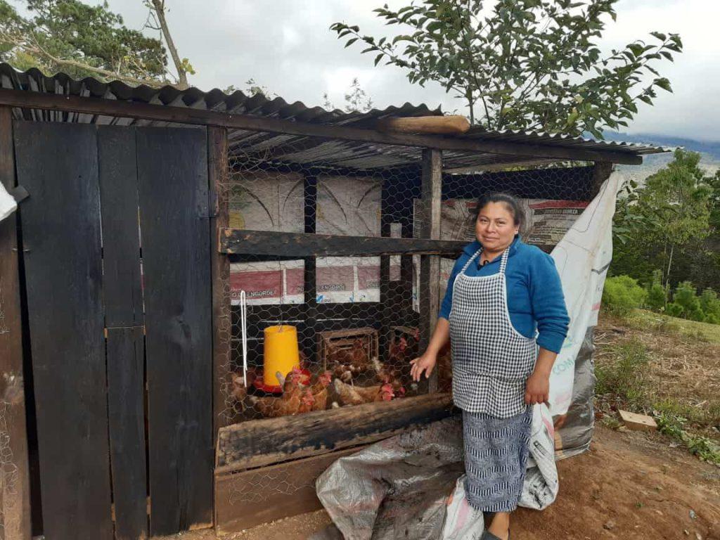 Proyecto de Desarrollo Rural Territorial PRODERT Ixoq'ib, financiado por HELVETAS/Embajada de Suecia en Guatemala