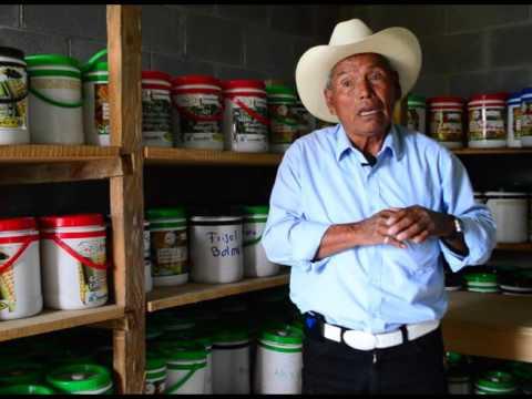 Reservas comunitarias de semillas Guatemala