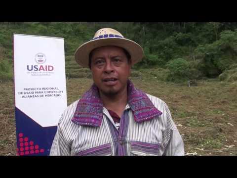 Proyecto regional USAID para comercio y alianzas de mercado
