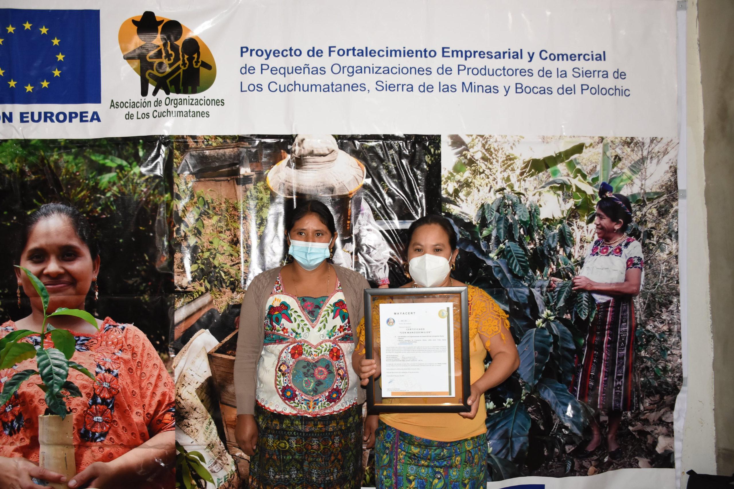 Entrega de Certificado Con Manos de Mujer y Equipo Control de Calidad en Café
